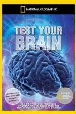 Test Your Brain: Season 1