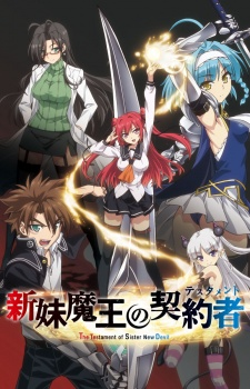 The Testament Of Sister New Devil (dub)