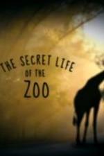 The Secret Life Of The Zoo: Season 3
