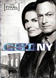 Csi: Ny: Season 9