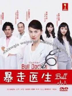 Bull Doctor
