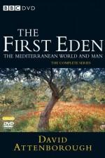 The First Eden: Season 1