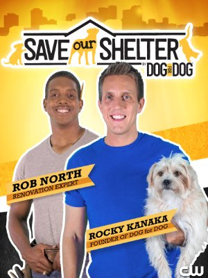 Save Our Shelter: Season 2