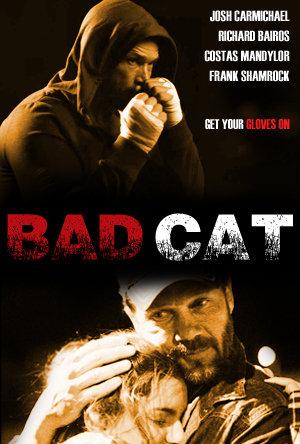 Bad Cat 2015