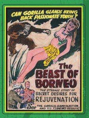 The Beast Of Borneo
