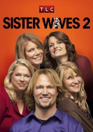 Sister Wives: Season 8