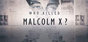 Who Killed Malcolm X?: Season 1