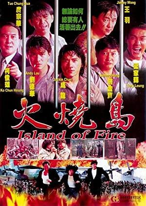 The Prisoner (1991)