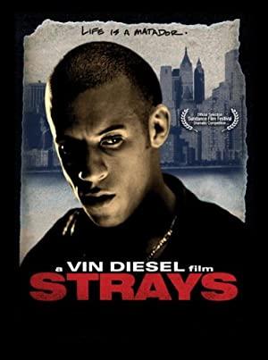Strays 1997