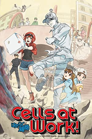 Cells At Work Special (sub)