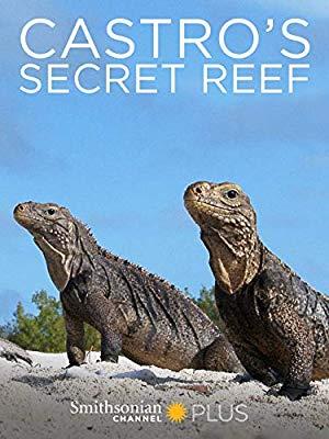 Castro's Secret Reef