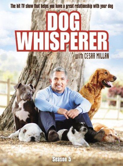 Dog Whisperer With Cesar Millan: Season 5