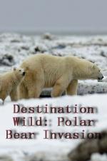 Destination Wild: Polar Bear Invasion