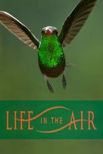 Life In The Air: Season 1