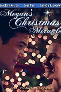 Megan's Christmas Miracle