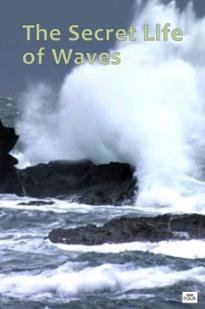The Secret Life Of Waves